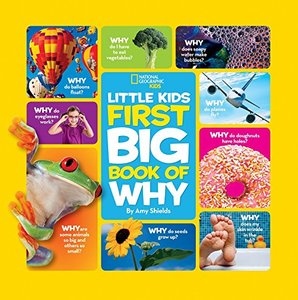 Little Kids First Book of Why