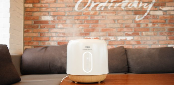 brick wall humidifier